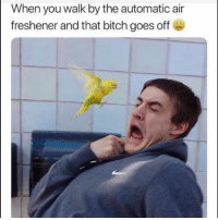 Bitch, Funny, and Air: When you walk by the automatic air  freshener and that bitch goes of 👀