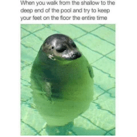 """Target, Tumblr, and Blog: When you walk from the shallow to the  deep end of the pool and try to keep  your feet on the floor the entire time <p><a class=""""tumblr_blog"""" href=""""http://humortastic.tumblr.com/post/127866395828"""" target=""""_blank"""">humortastic</a>:</p> <blockquote> <p>We've All Done This</p> </blockquote>"""