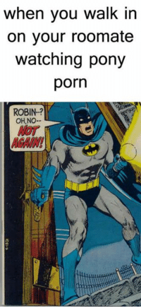 Batman e Robin cartoon porno nudo ragazza foto