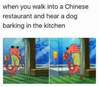 Restaurant: when you walk into a Chinese  restaurant and hear a dog  barking in the kitchen