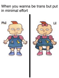 Dank Memes, You, and Lil: When you wanna be trans but put  in minimal effort  Phil  Lil