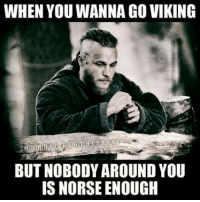 WHEN YOU WANNA GO VIKING  BUT NOBODY AROUND YOU  IS NORSE ENOUGH I seriously need some more viking friends.  For more content like this post and then go to our website: http://www.honortheroots.com