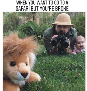 Safari, Issues, and You: WHEN YOU WANT TO CO TO A  SAFARi BUT YOU'RE BROHE [Had to reupload it because of rule issues]
