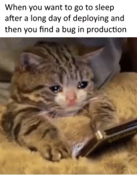 Go to Sleep, Sleep, and Bug: When you want to go to sleep  after a long day of deploying and  then you find a bug in production Why are we still awake? Just to suffer?
