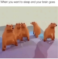 Memes, Brain, and Sleep: When you want to sleep and your brain goes Follow @comediic for more😂😂 - Credit: Unknown (DM for credit)