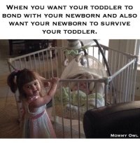 WHEN YOU WANT YOUR TODDLER TO  BOND WITH YOUR NEWBORN AND ALSO  WANT YOUR NEWBORN TO SURVIVE  YOUR TODDLER.  MOMMY OWL Ha!