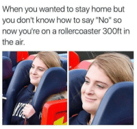 "Home, How To, and How: When you wanted to stay home but  you don't know how to say ""No"" so  now you're on a rollercoaster 300ft in  the air."