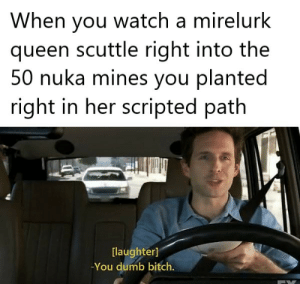 Bitch, Dumb, and Queen: When you watch a mirelurk  queen scuttle right into the  50 nuka mines you planted  right in her scripted path  [laughter]  -You dumb bitch. Take that you crabby bitch