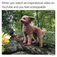 Funny, Instagram, and Meme: When you watch an inspirational video on  YouTube and you feel unstoppable  @tank.sinatra  MADE WITH MOMUS @ladbible is the best meme page on Instagram, period