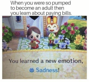 Counting sheep is a professional strategy: When you were so pumped  to become an adult then  ou learn about paying bills.  You learned a new emotion,  Sadness! : Counting sheep is a professional strategy