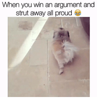 Memes, 🤖, and Struts: When you win an argument and  strut away all proud The sassiest waddle 😜