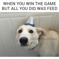 XDDDD tag a lucky feeder :^) meme from @gamebuddyapp: WHEN YOU WIN THE GAME  BUT ALL YOU DID WAS FEED  @Gane Buddy App XDDDD tag a lucky feeder :^) meme from @gamebuddyapp
