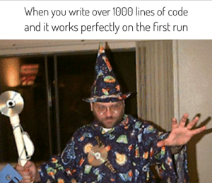 You know, I'm something of a scientist myself: When you write over 1000 lines of code  and it works perfectly on the first run  ERT You know, I'm something of a scientist myself
