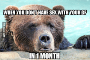 I very love my Gf but Im like this: WHEN YOUDONT HAVE SEX WITH YOURGF  IN 1 MONTH I very love my Gf but Im like this