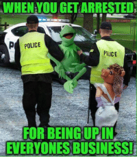 Kermit the Frog, Police, and Business: WHEN YOUGETARRESTEDN  p POLICE  POLICE  FOR BEING UPIN  EVERYONES BUSINESS!
