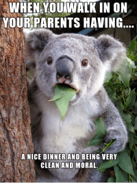 Parents, Nice, and Made: WHEN YOUIWALK IN ON  YOUR PARENTS HAVING  DINNER AND  CLEAN AND MORAL  A NICE  BEING VERY  made Hehe