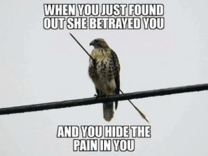 Hide, She, and You: WHEN YOUJUST FOUND  OUT SHE BETRAYED YOU  AND YOU HIDE THE  PAININ YOU Le amore