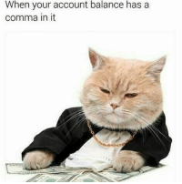 Trendy, Account, and Balance: When your account balance has a  comma in it Follow @cabbagecatmemes right meow