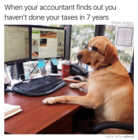 Funny, Taxes, and Doggo: When your accountant finds out you  haven't done your taxes in 7 years  @tank.sinatra  8 9  MADE WITH MOMUS This is gonna be ruff (dm me for doggo pic credit)