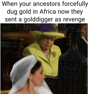 The Royal Family isnt feeling so good: When your ancestors forcefully  dug gold in Africa now they  sent a golddigger as revenge  al The Royal Family isnt feeling so good