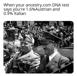 Be Like, Ancestry, and Test: When your ancestry.com DNA test  says you're 1.6%Austrian and  0.9% Italian It do be like that