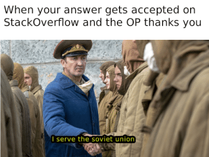 all programmers should unionize.: When your answer gets accepted on  StackOverflow and the OP thanks you  I serve the soviet union all programmers should unionize.