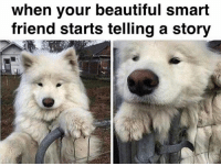 your beautiful: when your beautiful smart  friend starts telling a story