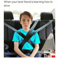 """BFF: """"How's my driving?"""" Me: """"It's great""""👌🏻😐 plsdontkillus whogaveyouadriverslicense: When your best friend is learning how to  drive BFF: """"How's my driving?"""" Me: """"It's great""""👌🏻😐 plsdontkillus whogaveyouadriverslicense"""