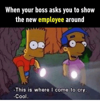 """Memes, Cool, and Http: When your boss asks you to show  the new employee around  -This is where I come to cry.  -Cool. <p>Everytim via /r/memes <a href=""""http://ift.tt/2sRsYog"""">http://ift.tt/2sRsYog</a></p>"""