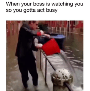 Meirl: When your boss is watching you  so you gotta act busy Meirl