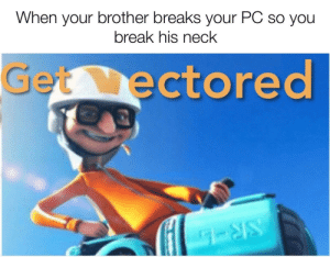 Let this be lesson for you: When your brother breaks your PC so you  break his neck  Get ectored Let this be lesson for you