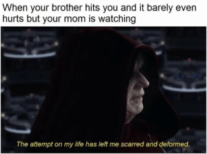 Help me by Alzztah101 FOLLOW 4 MORE MEMES.: When your brother hits you and it barely even  hurts but your mom is watching  The attempt on my life has left me scarred and deformed. Help me by Alzztah101 FOLLOW 4 MORE MEMES.