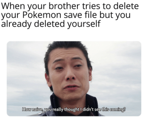 I am 10 steps ahead of you: When your brother tries to delete  your Pokemon save file but you  already deleted yourself  How naive, you really thought I didn't see this coming? I am 10 steps ahead of you
