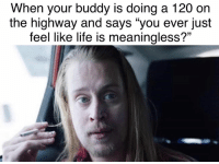 "Life, Memes, and Twitter: When your buddy is doing a 120 on  the highway and says ""you ever just  feel like life is meaningless?'"" Follow us on Twitter: DankMemesGang 🐦"