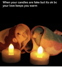 Fake, Love, and Candles: When your candles are fake but its ok bc  your love keeps you warm