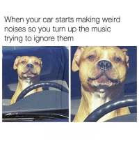 Funny, Music, and Turn Up: When your car starts making weira  noises so you turn up the music  trying to ignore them Tada problem solved😅 rp my bezzy @_thequeenofeverything_ @_thequeenofeverything_ @_thequeenofeverything_