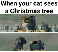 The ultimate battle.: When your cat sees  a Christmas tree  nailylL A  Op  Our battle will be legendary The ultimate battle.