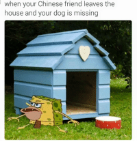 Dogs, Friends, and Chinese: when your Chinese friend leaves the  house and your dog is missing