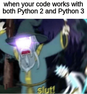only 5 days left guys: when your code works with  both Python 2 and Python 3  slut! only 5 days left guys