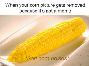 Let's try again: When your corn picture gets removed  because it's not a meme  Sad corn noises* Let's try again