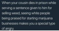 Blackpeopletwitter, Weed, and White People: When your cousin dies in prison while  serving a sentence given to him for  selling weed, seeing white people  being praised for starting marijuana  businesses makes you a special type  of angry. <p>The hypocrisy of capitalism (via /r/BlackPeopleTwitter)</p>