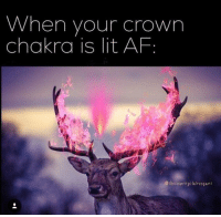 Af, Lit, and Lit AF: When your crown  chakra is lit AF  Oihecountryclairvojant