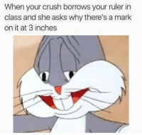 Crush, Ruler, and Asks: When your crush borrows your ruler in  class and she asks why there's a mark  on it at 3 inches https://t.co/L3NETmzq7C