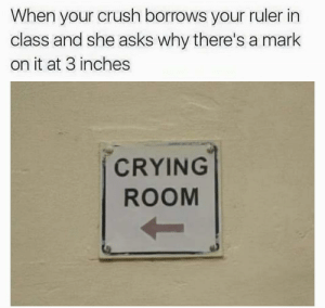 Crush, Crying, and Ruler: When your crush borrows your ruler in  class and she asks why there's a mark  on it at 3 inches  CRYING  ROOM https://t.co/a9EAuR0Da1