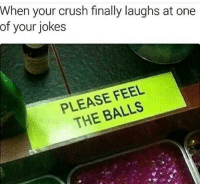 """Crush, Memes, and Http: When your crush finally laughs at one  of your jokes  PLEASE FEEL  THE BALLS <p>Appropriate on Valentines via /r/memes <a href=""""http://ift.tt/2Euv4F2"""">http://ift.tt/2Euv4F2</a></p>"""