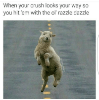 😂😂😂😂😂😂 NoChill: When your crush looks your way so  you hit em with the ol' razzle dazzle 😂😂😂😂😂😂 NoChill