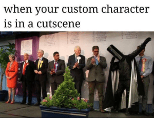 Character, Twit, and Custom: when your custom character  is in a cutscene  Maidenhend  ac  Twit