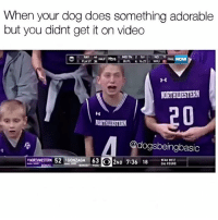 I can't believe I missed that, my life has no meaning.: When your dog does something adorable  but you didnt get it on video  MDTN 2 1st  ANAL  NORTHWESTERN  Codogsbeingbasic  NORTHWESTERN 52 GONZAGA 63  O2ND 6 18 I can't believe I missed that, my life has no meaning.