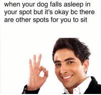 I'll sit anywhere bud 😍😍 (fb: wholesome memes): when your dog falls asleep in  your spot but it's okay bc there  are other spots for you to sit I'll sit anywhere bud 😍😍 (fb: wholesome memes)