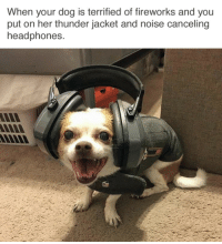 "Reddit, Tumblr, and Blog: When your dog is terrified of fireworks and you  put on her thunder jacket and noise canceling  headphones <p><a href=""http://tumblr.tastefullyoffensive.com/post/162631348638/dog-parenting-done-right-via-realgirldiet"" class=""tumblr_blog"">tastefullyoffensive</a>:</p>  <blockquote><p>Dog parenting done right. (via <a href=""https://www.reddit.com/user/Realgirldiet"">realgirldiet</a>)</p></blockquote>"